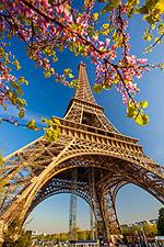 Foto: Der Eiffelturm in Paris wurde zum Lieblings-Aufenthaltsort für den März gewählt