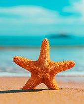 Ein Strandtag im August … - Machen Sie mit bei unserem Gewinnspiel! (© Myst − Fotolia.com)