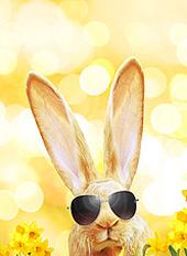 Schöne Ostertage im April - Machen Sie mit bei unserem Gewinnspiel! (© Thaut Images - Fotolia.com)