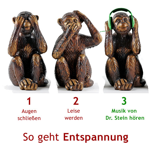 Gleich 10x haben sich diese Affen bei unserern CDs versteckt. Finden Sie sie!